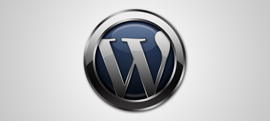 wordpress-30